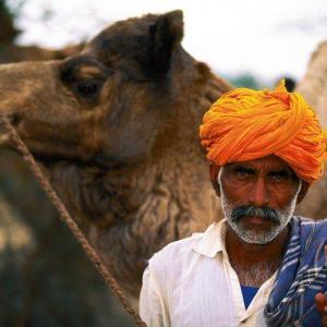 Indian kultur fototryck på glas | felix oppenheim