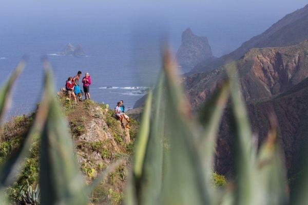 Tenerifetrek resebilder tryckta på glas | felix oppenheim