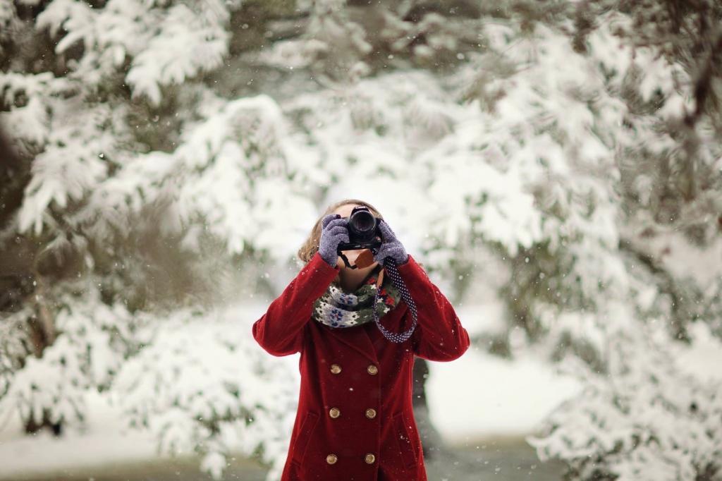 Bilder vinter